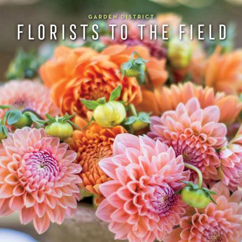 Garden District Florists To The Field Novel